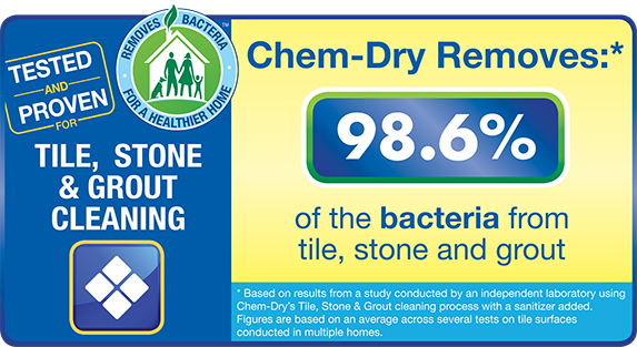98.6% of bacteria from tile, stone and grout can be eliminated by trusted professionals - image